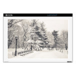 Central Park Winter Path - New York City Decal For Laptop