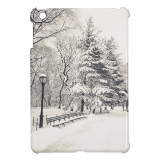 Central Park Winter Path - New York City iPad Mini Cases