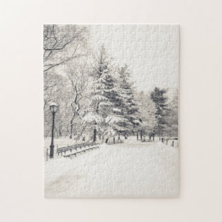 Central Park Winter Path - New York City Jigsaw Puzzle