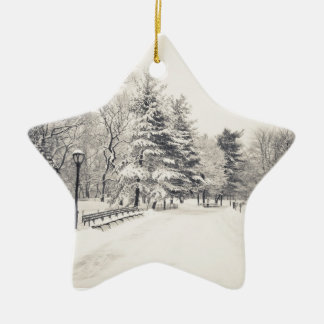 Central Park Winter Path - New York City Christmas Tree Ornaments