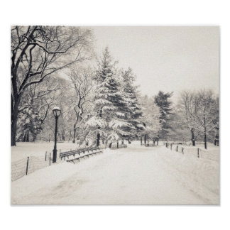Central Park Winter Path - New York City Poster