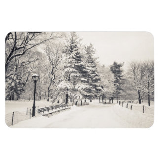 Central Park Winter Path - New York City Rectangular Photo Magnet