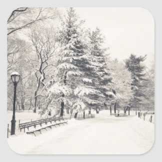 Central Park Winter Path - New York City Square Sticker