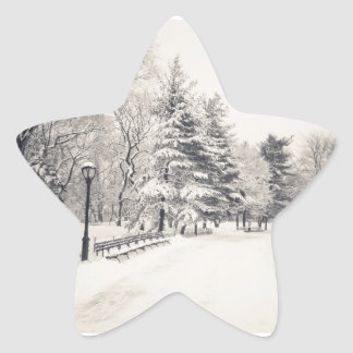 Central Park Winter Path - New York City Star Sticker