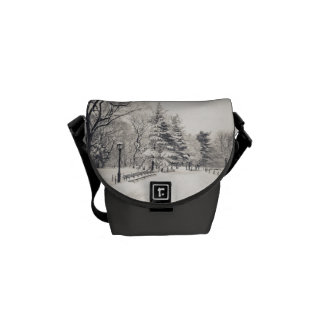 Central Park Winter Path - New York Messenger Bag