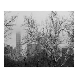 Central Park Winter Snow Landscape Photo Posters