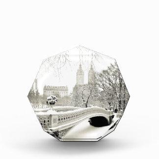 Central Park Winter - Snow on Bow Bridge Award