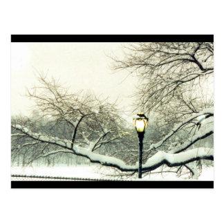 central park winter tree postcard
