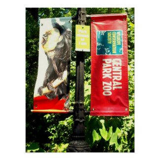 Central Park Zoo Poster