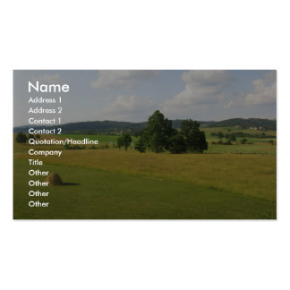 Central Serbian Farms Double-Sided Standard Business Cards (Pack Of 100)