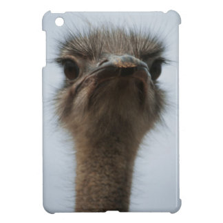 Central South Africa, African Ostrich, Close-up Cover For The iPad Mini