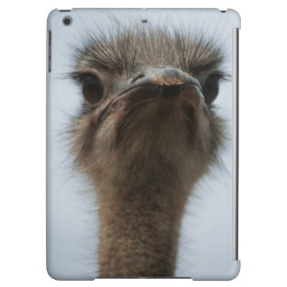 Central South Africa, African Ostrich, Close-up iPad Air Covers