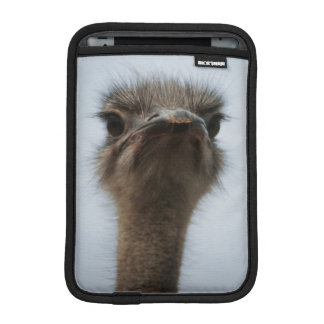 Central South Africa, African Ostrich, Close-up iPad Mini Sleeve