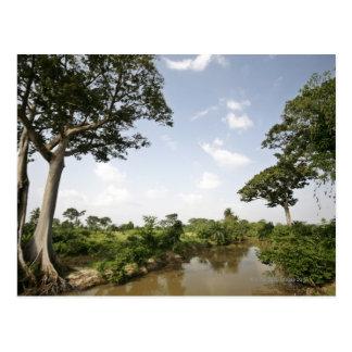 Central Togo West Africa Postcard