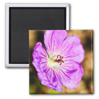 centre of a beautiful stormy past 2 inch square magnet
