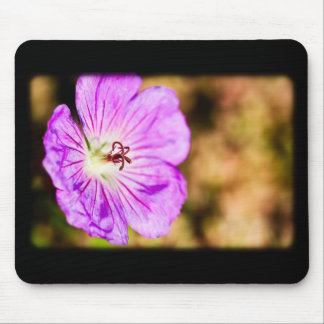 centre of a beautiful stormy past mouse pad
