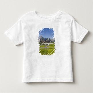 Centre St Bridge and Downtown Calgary, Alberta, 2 Shirts