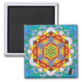 Centris Kaleidoscope Magnet