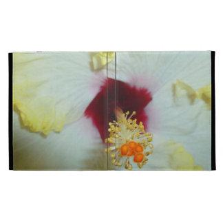 Centro amarillo del rojo del hibisco w