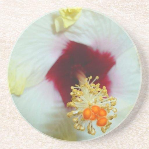 Centro amarillo del rojo del hibisco w posavasos manualidades