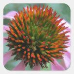 Centro de la flor del cono calcomanias cuadradas