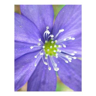 Centro de una flor azul con los sellos blancos plantillas de membrete