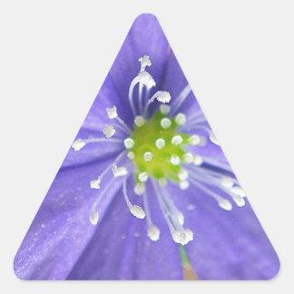 Centro de una flor azul con los sellos blancos pegatina triangulo