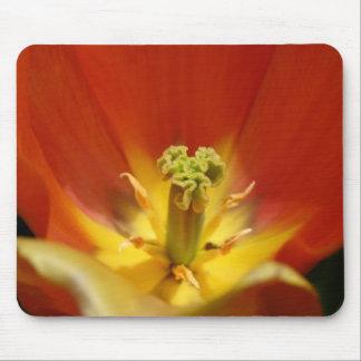 Centro del tulipán tapetes de ratones