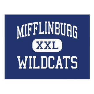 Centro Mifflinburg de los gatos monteses de Postal