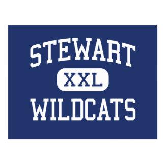 Centro Norristown de los gatos monteses de Stewart Tarjetas Postales