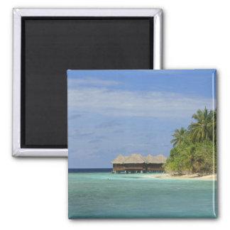 Centro turístico isleño de Bandos, atolón masculin Iman De Nevera