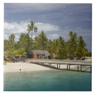 Centro turístico isleño de la plantación, isla 3 d azulejo cuadrado grande
