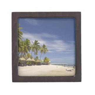 Centro turístico isleño de la plantación, isla 4 d caja de regalo de calidad