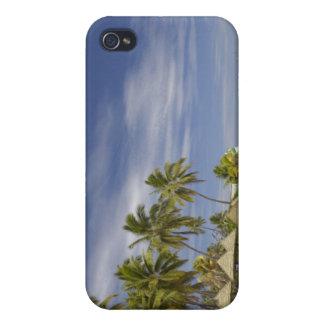 Centro turístico isleño de la plantación, isla 4 d iPhone 4 fundas