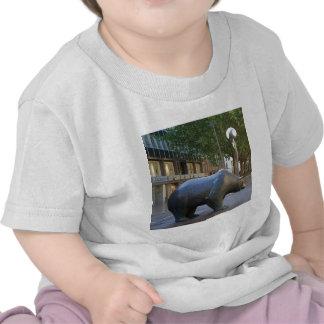 Ceñudo Camiseta