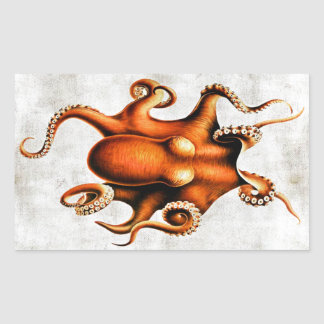 Cephalopoda of the Hawaiian Islands Sticker