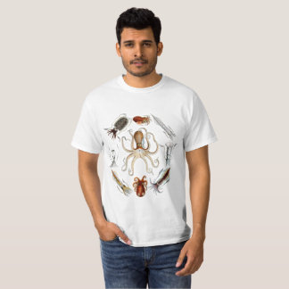 Cephalopods of Britain Shirt
