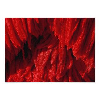 Cepillo colorido de la fregona invitacion personal