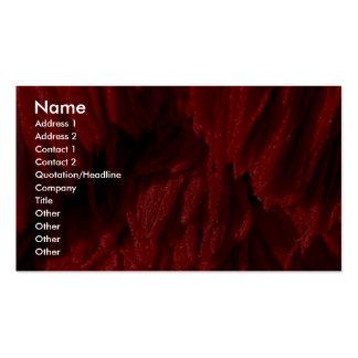 Cepillo colorido de la fregona plantilla de tarjeta personal
