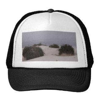 Cepillo del desierto en la arena blanca gorros