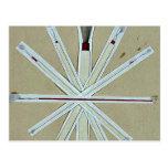 Cepillos usados en la pintura de la laca, higo 5 U Tarjeta Postal