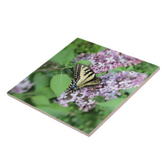 Ceramic Tile - ET Swallowtail on Lilac