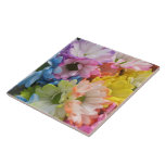 Ceramic Tile - MultiColored Daisies II