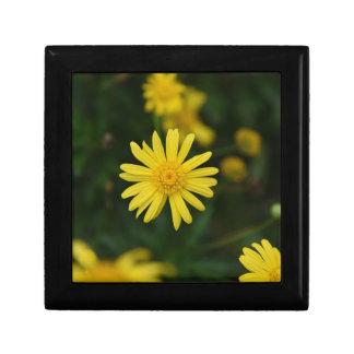 Ceramic Tile Top Square-Yellow Daisy Flower Box