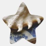 Cerámica azul del mar pegatina en forma de estrella