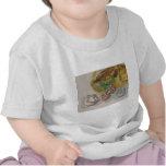Cerámica de Anasazi Camisetas