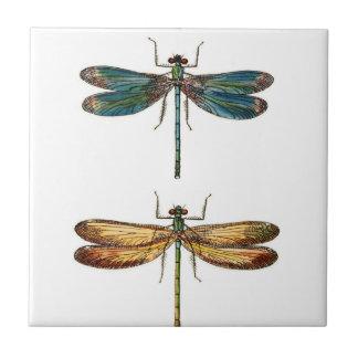 Cerámica del dúo de la libélula azulejo cuadrado pequeño