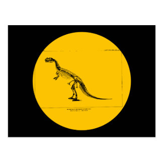 Ceratosaurus Nasicornis Tarjetas Postales