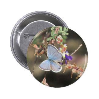 Ceraunus Blue Butterfly Pinback Button