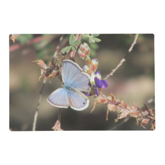 Ceraunus Blue Butterfly Placemat